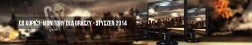 monitory-dla-graczy-2014